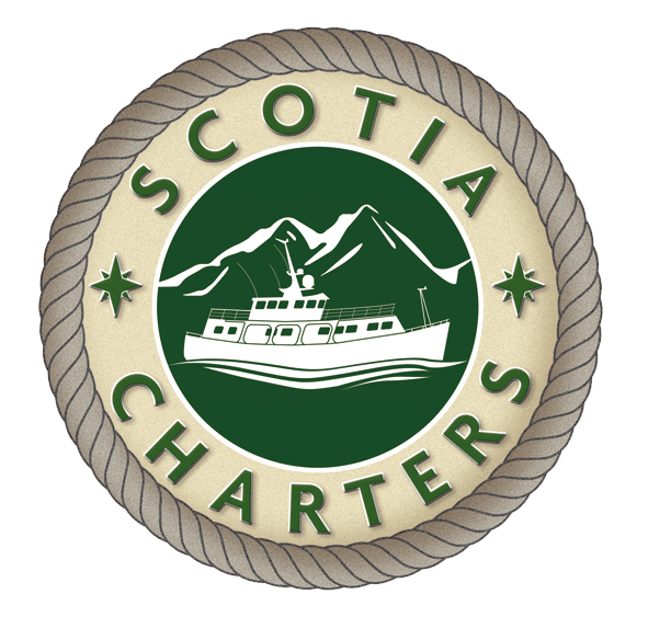 Welcome aboard the Scotia W, a unique boat and breakfast