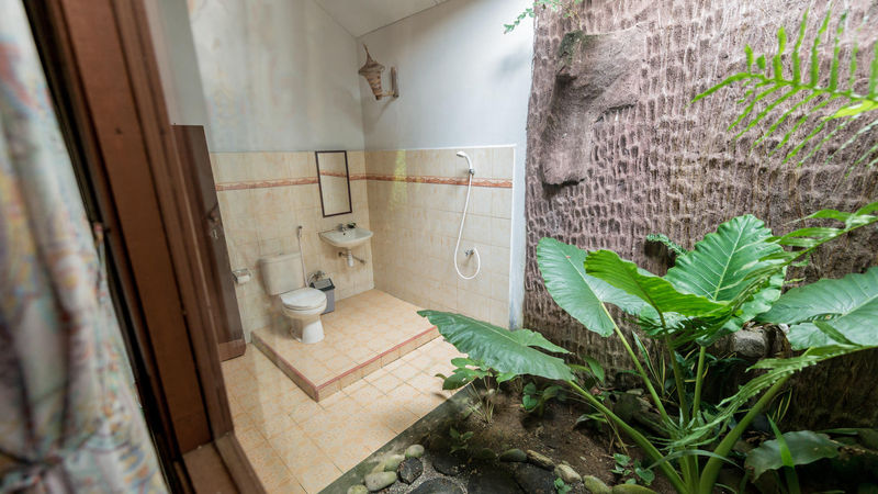 Medium crop orang utan room 022
