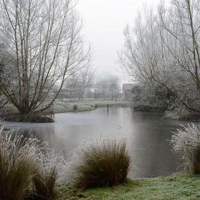 Thumb frozen pond