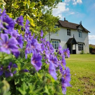 Thumb guest house shrewsbury flowers 500x500