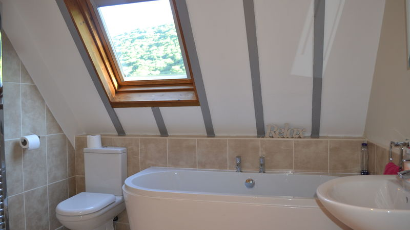 Medium crop caer caradoc bathroom