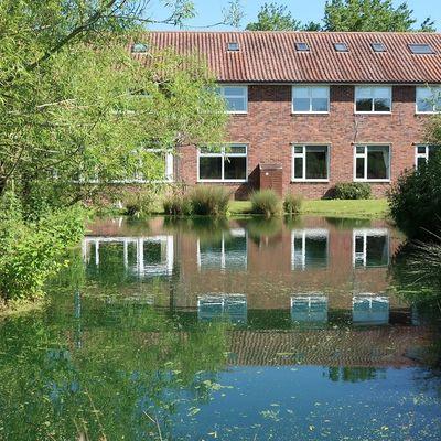 Thumb pond 2