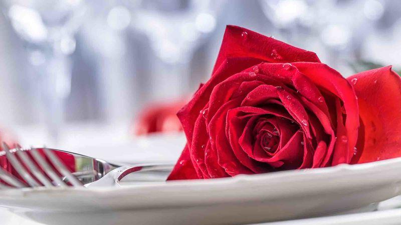 Medium crop valentine s table rose   web version