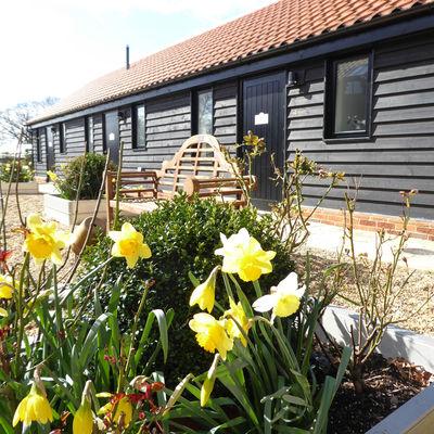 Thumb mollett s farm   rose garden courtyard p1020411