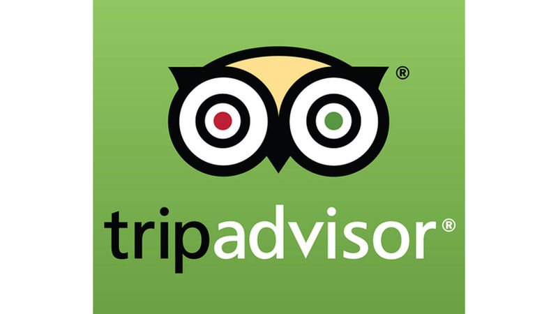 Medium crop tripadvisor logo 3