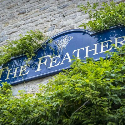 Thumb the feathers signage