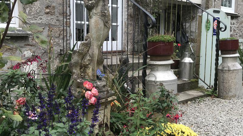 Medium crop flower beds at higher trewithen holliday cottages