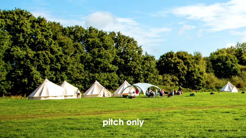 Photograph of Embers Polesden Lacey - max 6 persons per pitch