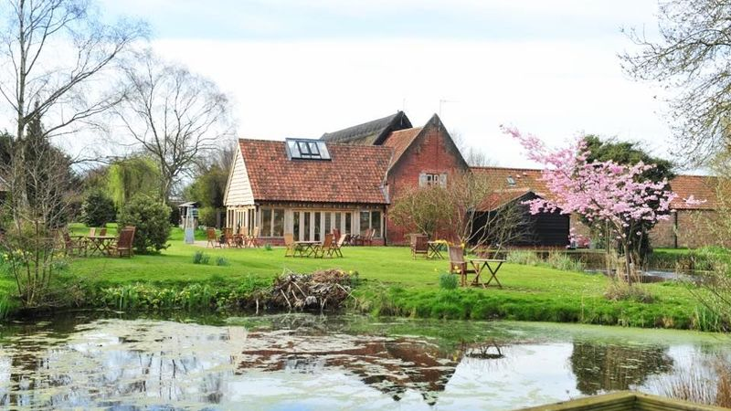 Medium crop ivy house