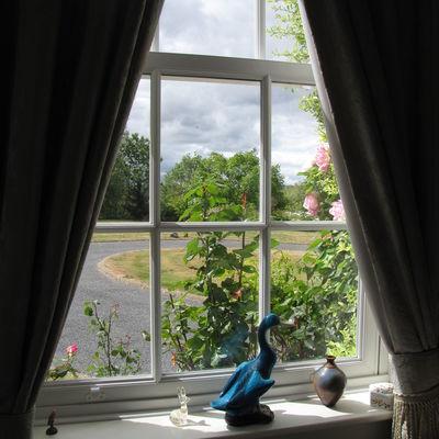 Thumb garden view