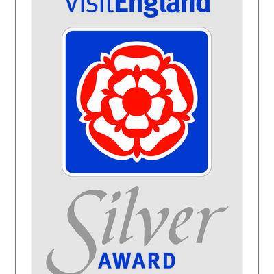 Thumb silver award  stickersign