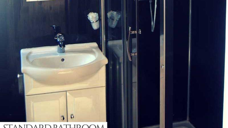Medium crop boston standard bathroom shower