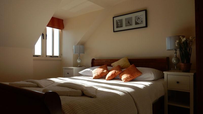 Medium crop clover d bedroom
