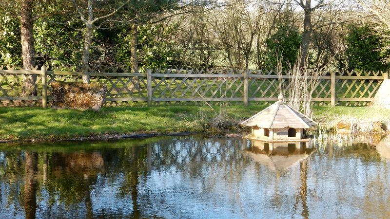 Medium crop pond manor