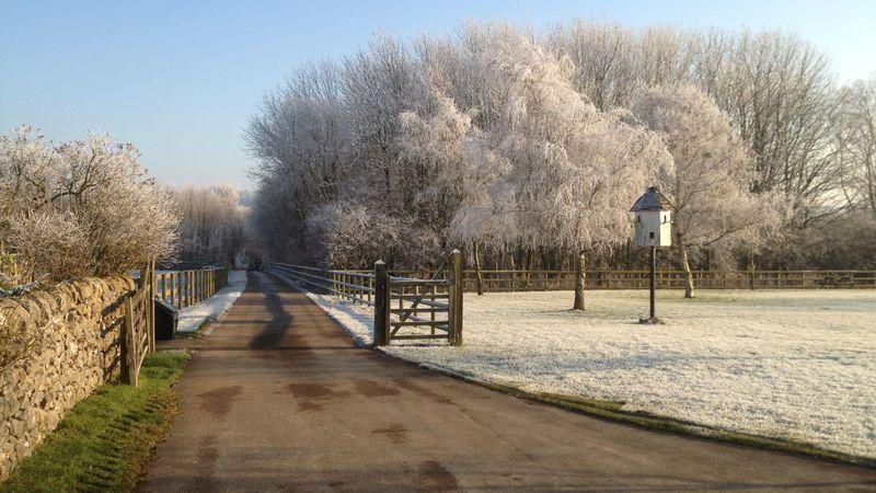 Medium crop frosty day shiningford
